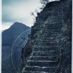 stone stairway carved into mountain side near Pisac Peru