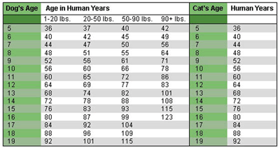 table showing ages vs weight for cats and dogs