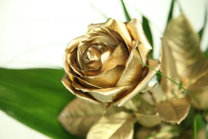Goldene Rose  Rosenbote