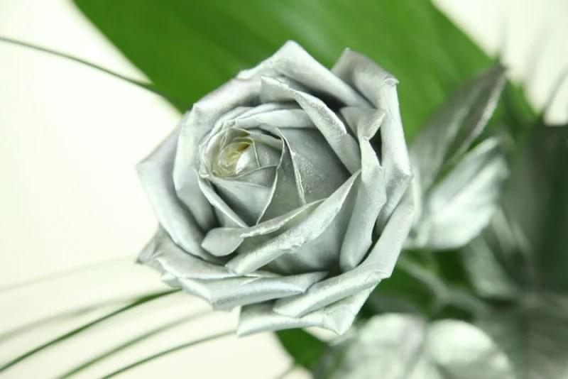 Silberne Rose  Rosenbote