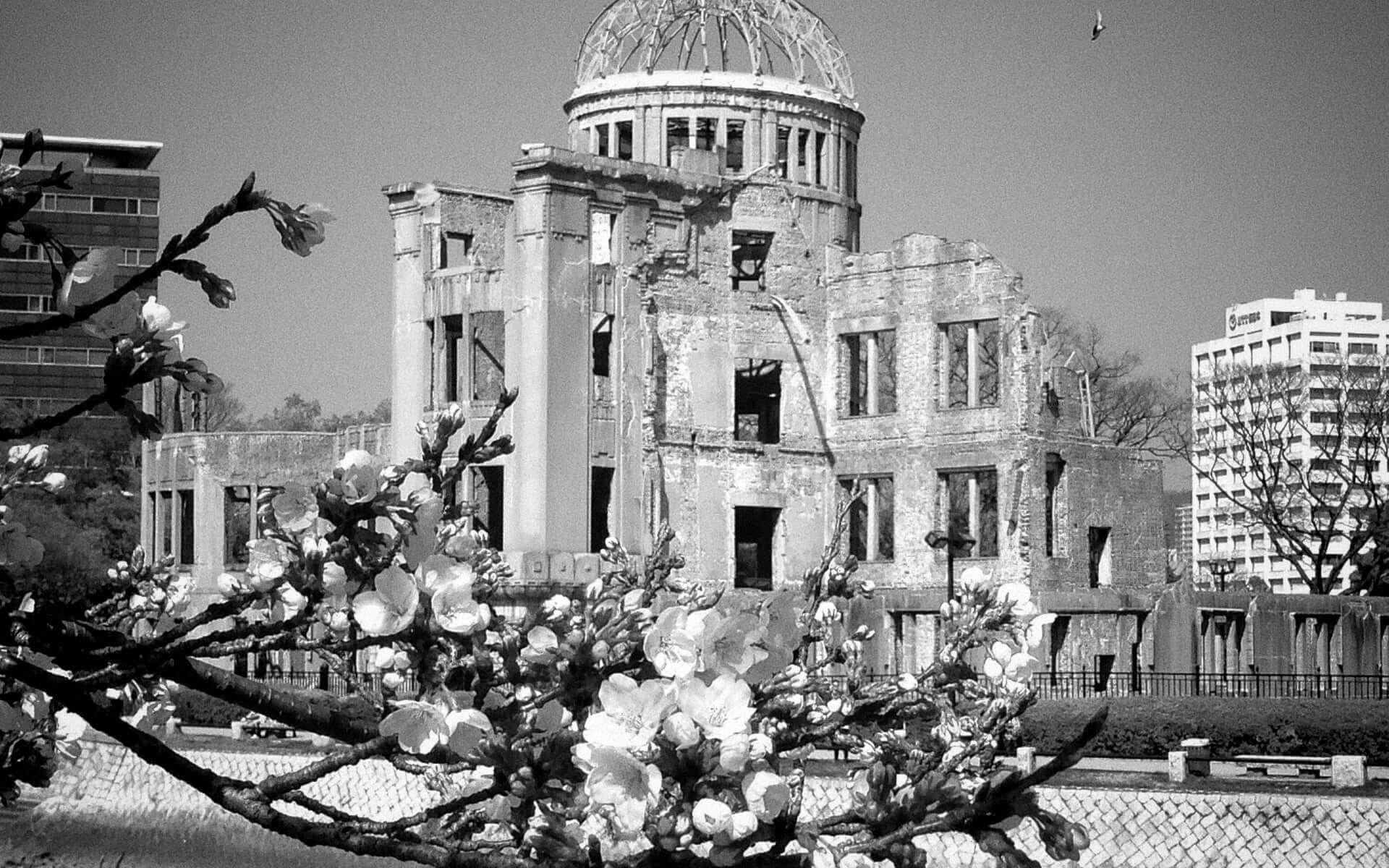 Imagen del monumento de la paz en Hiroshima durante la floración del cerezo.