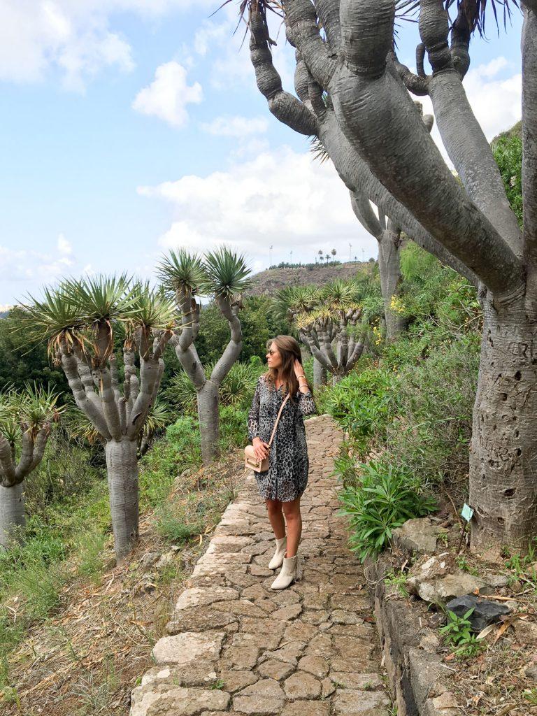 nature_Grande_Canarie_visite_gratuite_jardin
