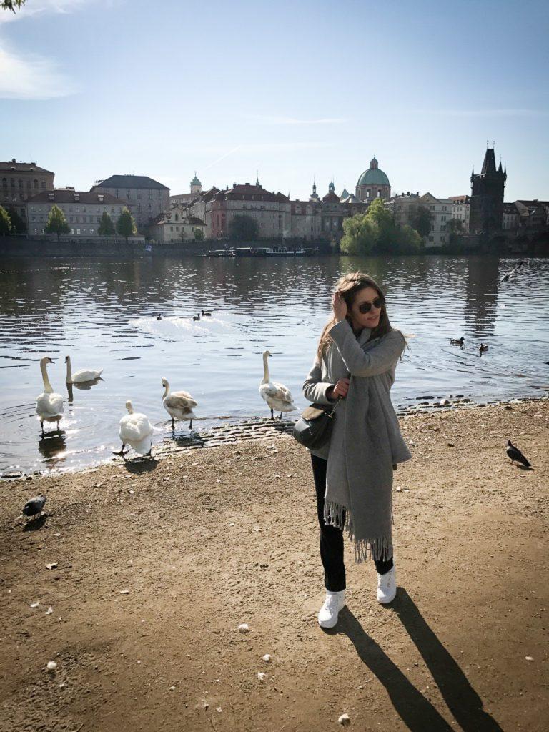 view_Prague_rosesinparis