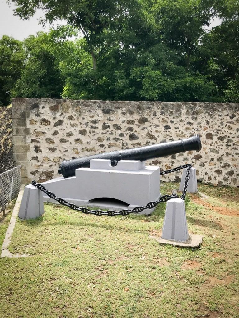 Fort_Napoleon_rosesinparis