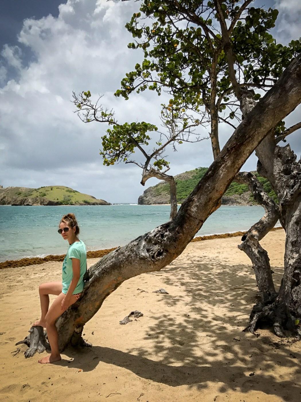 Pompierre_beach_Saintes_Guadeloupe