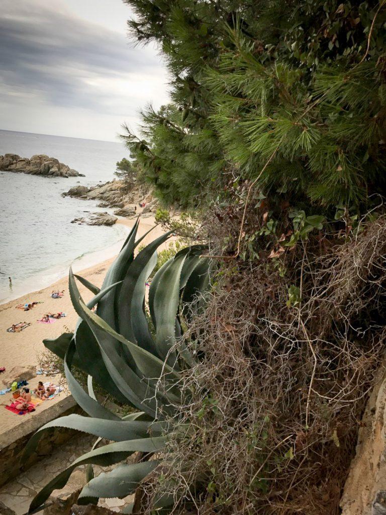 sand_beach_costa_Brava_5_places_belladona