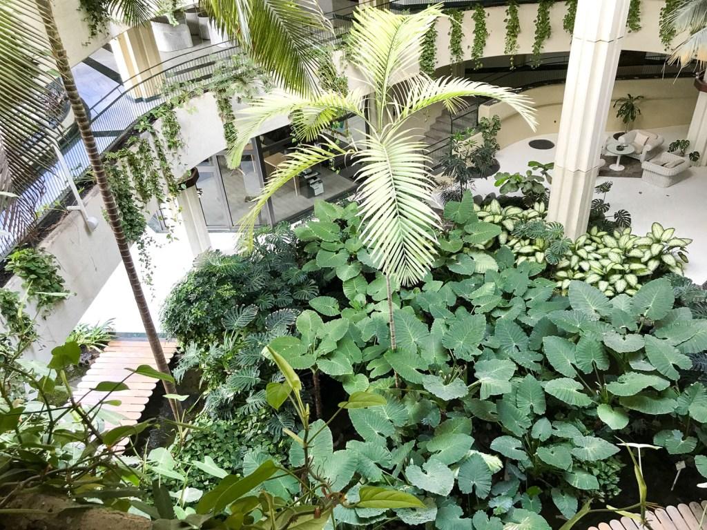 garden_inside_hotel_Lanzarote