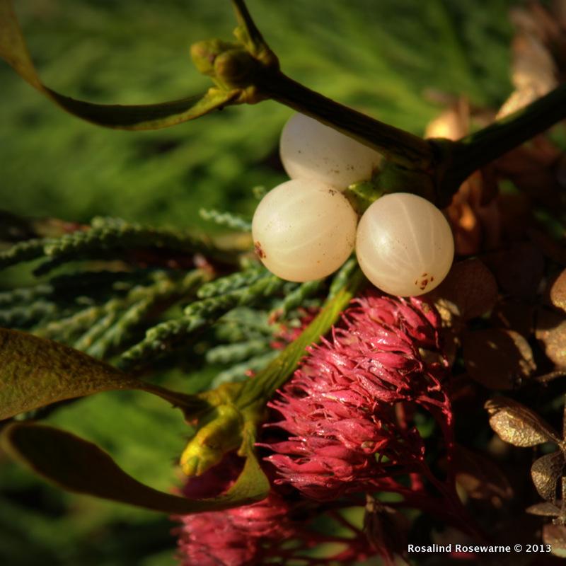 Mistletoe in wreath
