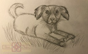 Rosie Crafts Dog Drawing