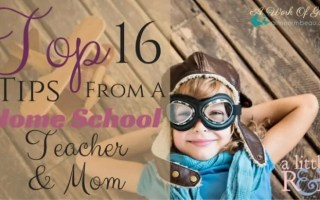 Top 16 Tips From A Home School Teacher and Mom
