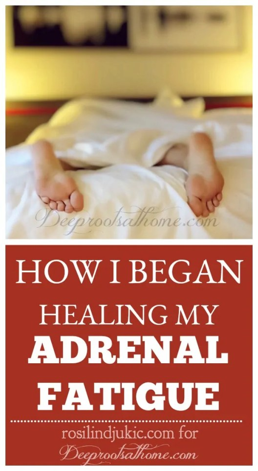How I Began Healing My Adrenal Fatigue By Rosilind Juki?, health, rest, recuperation, adrenaline junkie, fun, excitment, drained, coffee addict, chocolate, weight gain, mononucleosis, hives, panic attacks, pregnancy, miscarriage, female hormones, low cortisol level, endocrine system, stress, adrenal glands, adrenal crash, success, desperation, ketogenic diet, migraine headaches, pain, low carbohydrate, moderate protein, high fat diet, anti-inflammatory, eliminate grains, starchy vegetables, sugar, fruit, hormone function, hormone imbalances, thyroid dysfunction, insulin resistance, diabetes, glucose, energy, efficient energy, fat, estrogen, insulin, ketosis, Bosnia,
