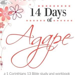 Agape Bible Study - Bible Study List