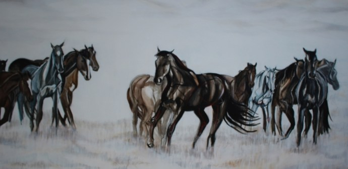A Band of Brumbies