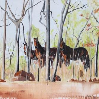 Outback Brumbies_62cmx62cm_Acrylic