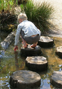 Pond Dipping  RoSPA