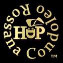 Logo Rossana Condoleo - HDP