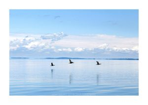 Some more Lake Champlain magic (Photo: Georgina Goodwin)