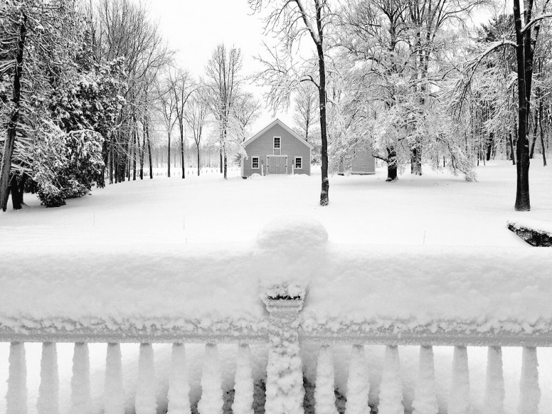 Winter started out with a deep, heavy, wet snowfall in early December 2014.