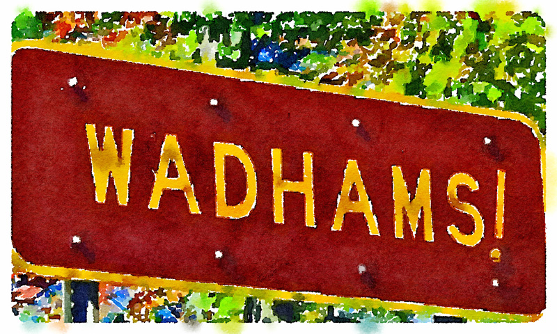 Wadhams! (Digital watercolor inspired by photo accompanying Suzanne Maye's blog post cited below.)