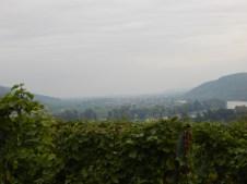 Blick vom Goldberg ins Donautal