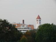 Solid-Bau und St. Martin vom Stadtpark aus