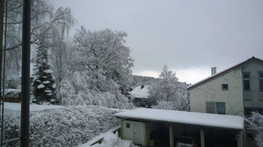 Winter 2015 in Scheuring