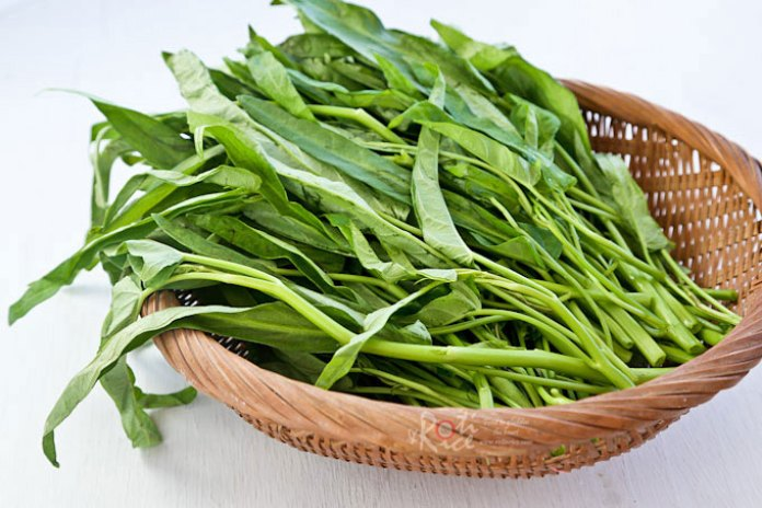 Image result for Kangkung