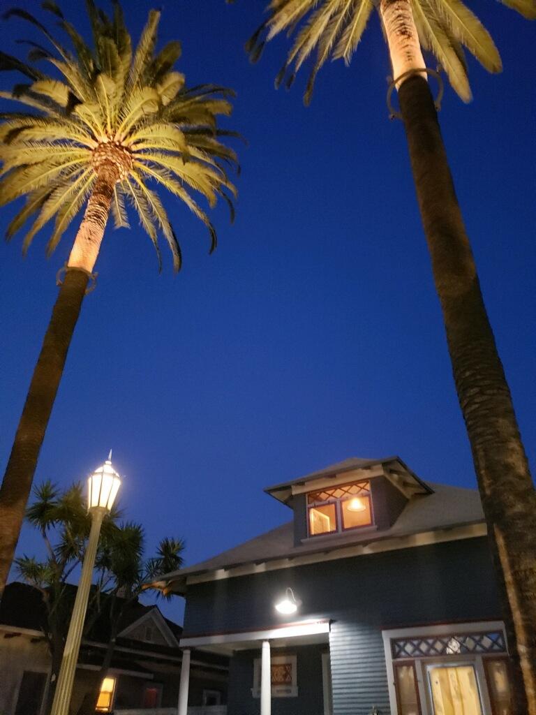 palm tree light ring roto lite inc