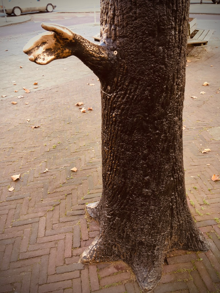 Rotterdam Daily Photo: This tree wants to shake your hand