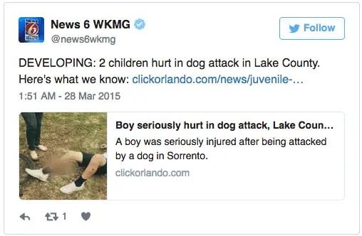Rottweiler Saves Boy