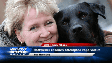 dog rape victim