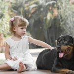 Are Rottweilers Good With Kids?