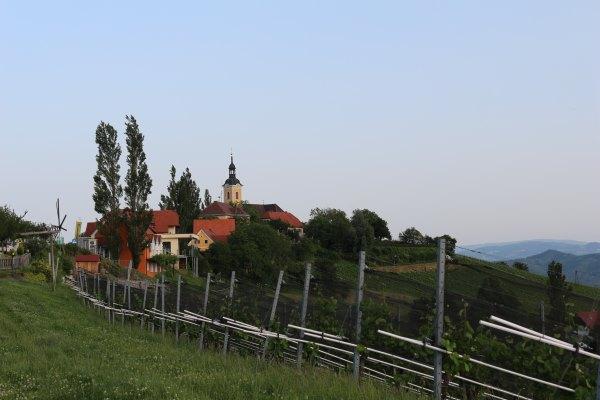Südsteiermark_Wein.3