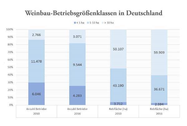 Weinbau_Betriebsgroessenklassen_Deutschland