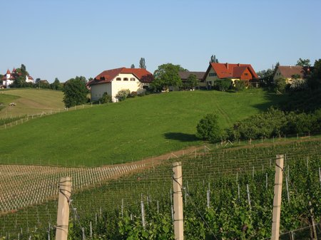 SüdSteiermark Weingut-Pilch