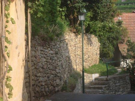 Wachau Spitz