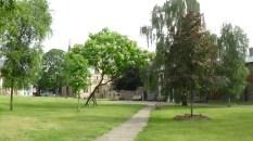 cathedral precincts