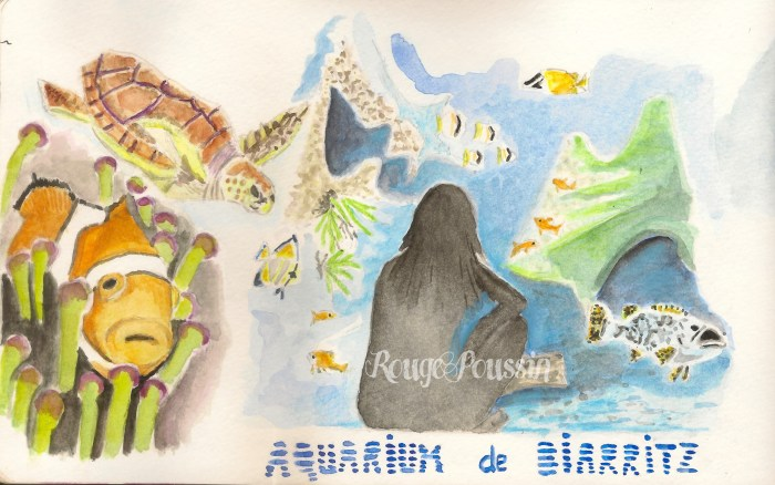Dessin et aquarelle de l'aquarium de Biarritz