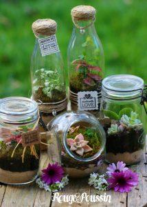 Idée Cadeau : un mini-terrarium pour sa fête …