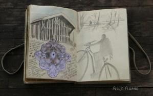 Balade autour du bassin d'arcachon en vélo