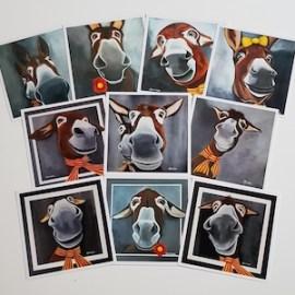 Le portrait de véritables petits ânes