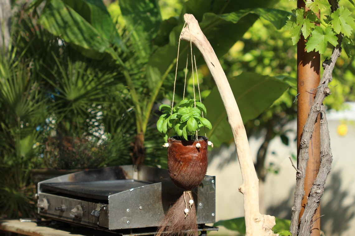 Cache-pot en fibre de palmier sur la terrasse qui permet d'avoir du basilic à portée de main