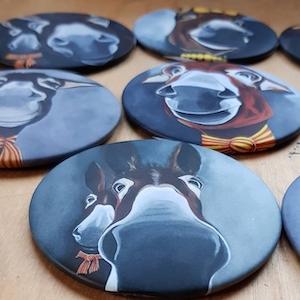 Une série de 9 magnets représentant le portrait d'ânes catalans.