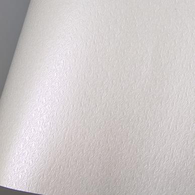 papier ostra imitation cuir 68 5 x 50 cm 185 g m