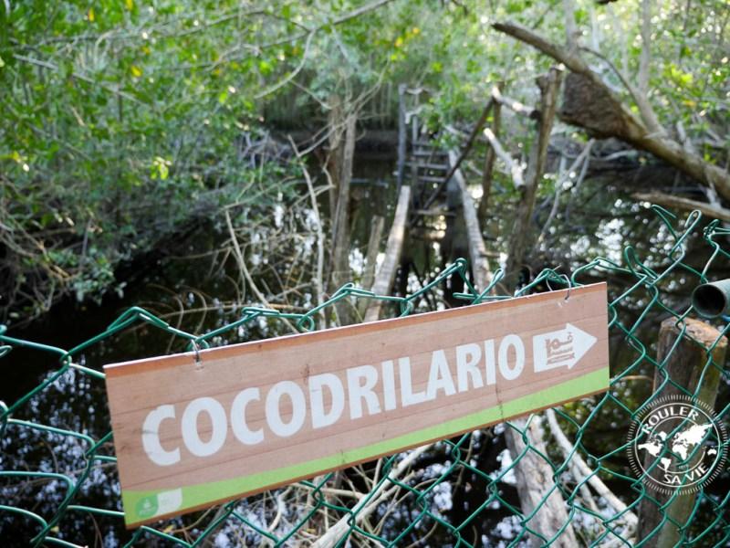 cocodrilario