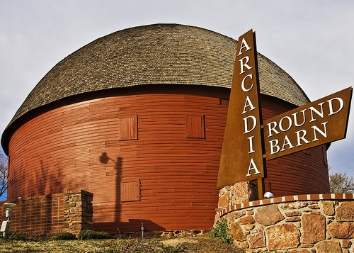 Hundreds of daffodil bulbs planted at Round Barn of Arcadia