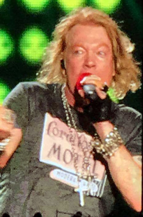 Axl Rose wears Coral Court Motel shirt during St. Louis show