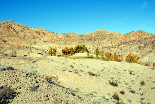 Wildlife officials dismiss review of Mojave Desert water project