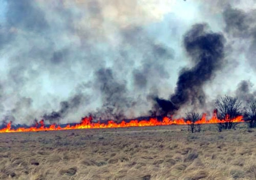 Wildfire jumps I-40 near Shamrock, closes road for hours