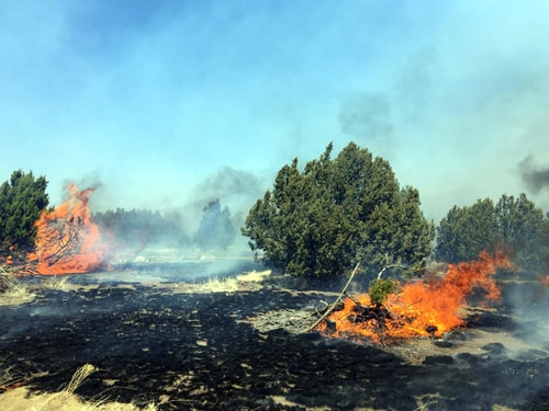 Wildfire forces evacuation of Winona